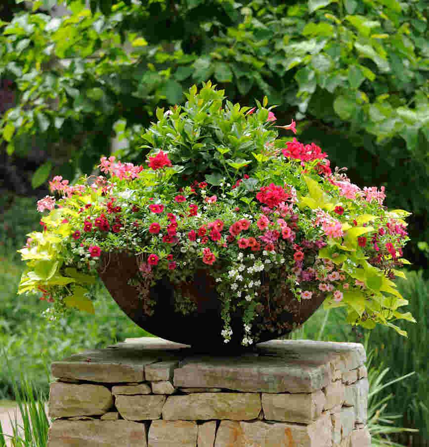 dekoratif çiçek saksıları
