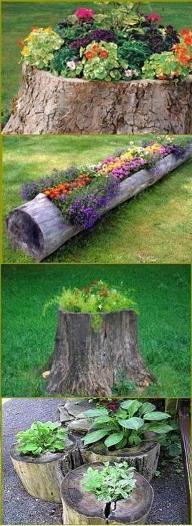 ağaç kütüğünden bahçe saksı yapımı