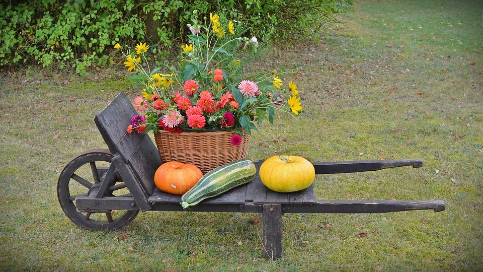 Bahçe Dekorasyonunda İlginç Fikirler (17)