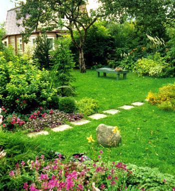 Amazing Bahçe Ev Peyzaj Bahçe için  Bitki Seçimi İpuçları