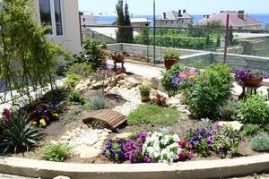 Beautiful Evin Güzel Bir Çiçek Bahçesi Oluşturmak