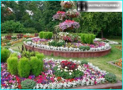 Best Çiçek Güzel Bir Çiçek Bahçesi Oluşturmak