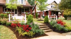 Compact Su Ev Peyzaj Bahçe için  Bitki Seçimi İpuçları