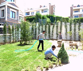 Contemporary Peyzaj Ev Peyzaj Bahçe Planlama