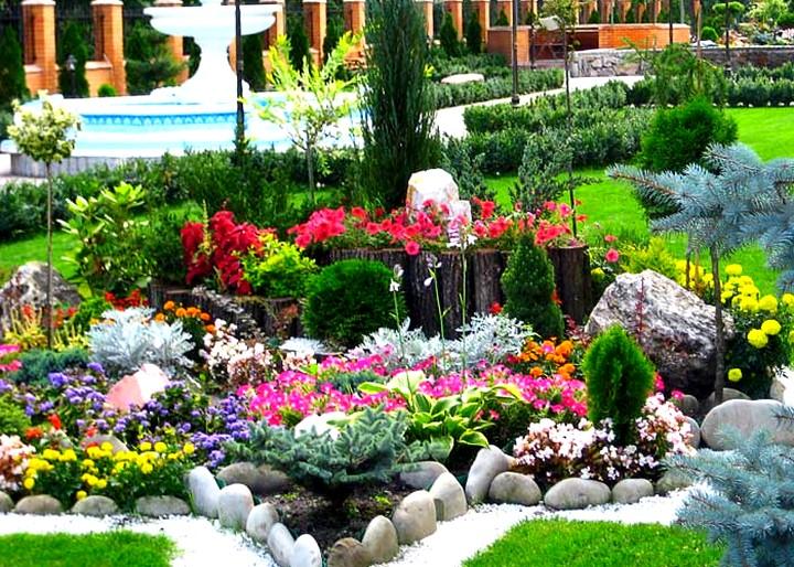 Elegant Bu Güzel Bir Çiçek Bahçesi Oluşturmak