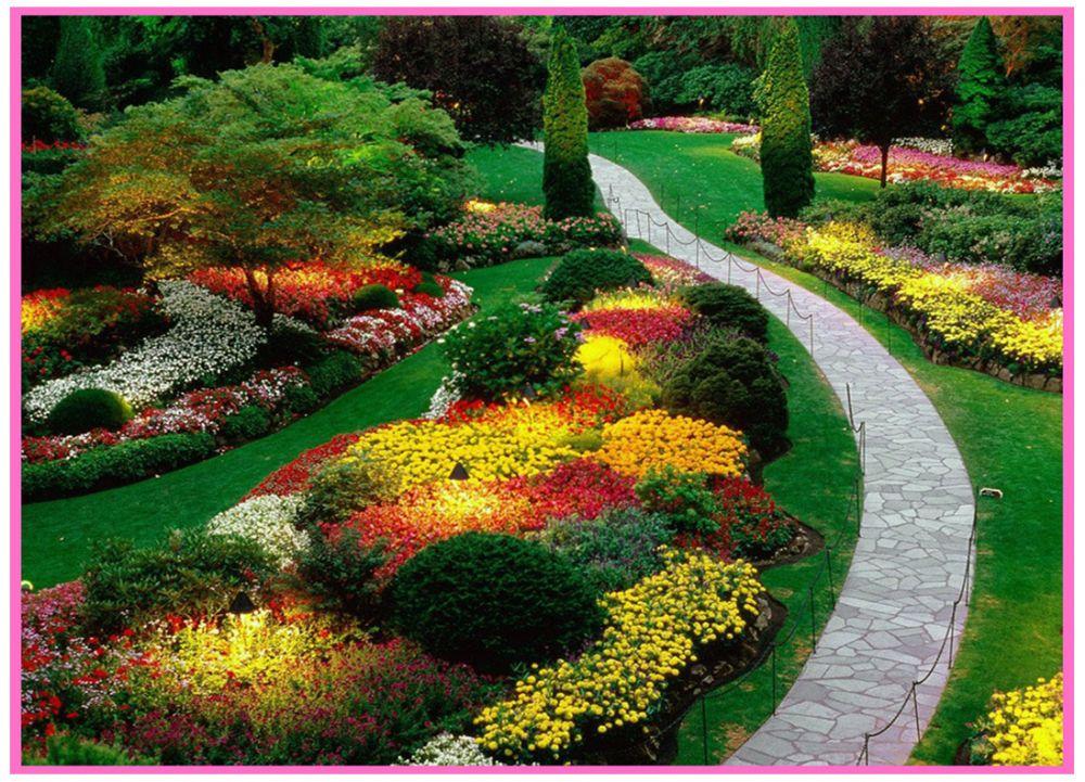 Elegant Rengarenk Ev Peyzaj Bahçe Planlama