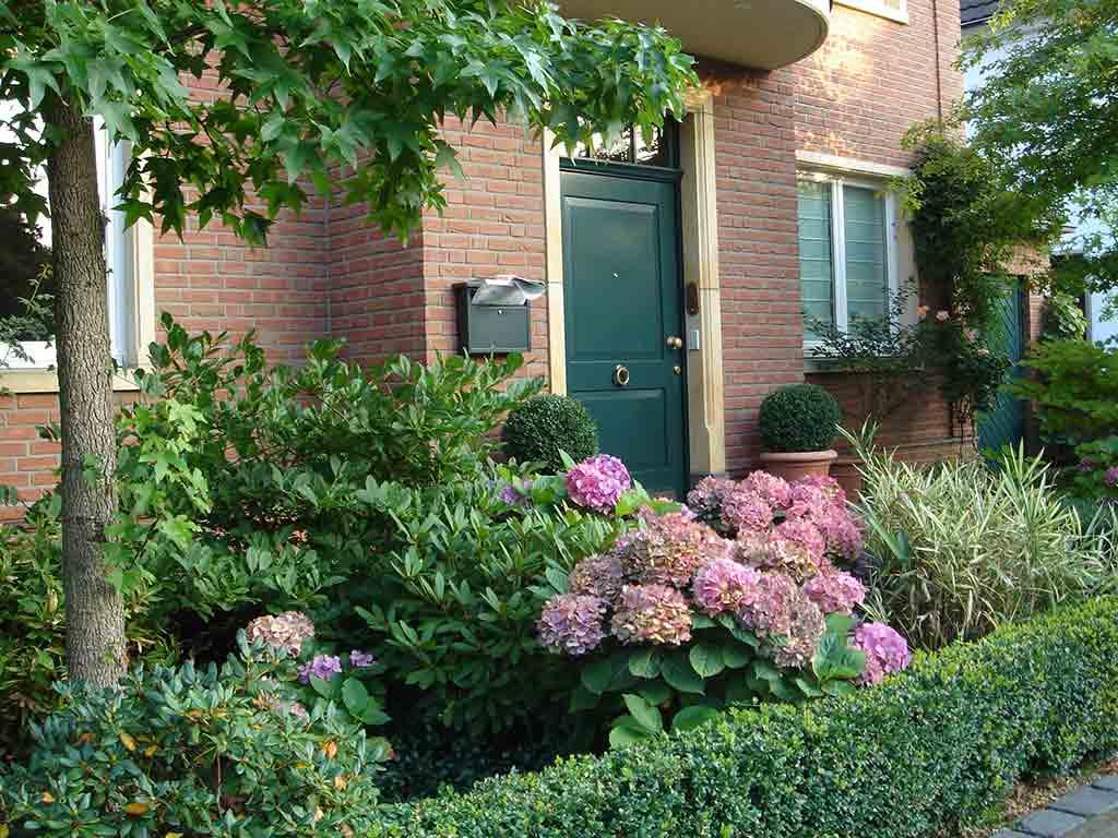 Popular Evin Ev Peyzaj Bahçe için  Bitki Seçimi İpuçları
