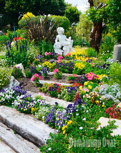 Stunning Bir Güzel Bir Çiçek Bahçesi Oluşturmak